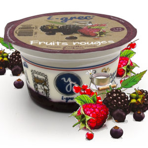 Yaourt I-Grec 4 fruits rouges